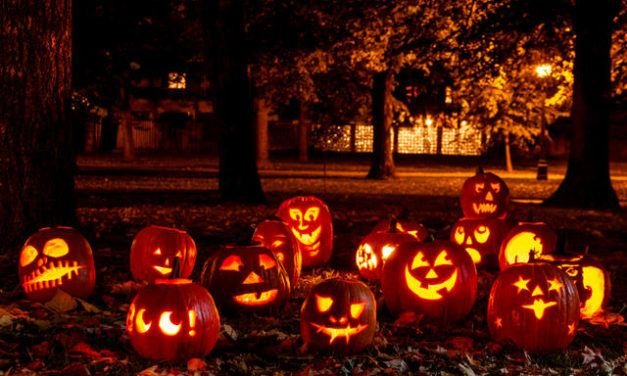Pumpkin Hunt 2019 – Ready for Hunting!  Halloween season is here!