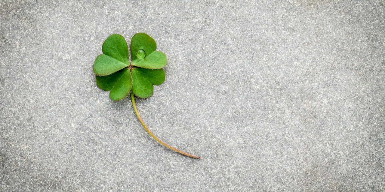 Everyone Knows About Four-Leaf Clover Superstitions
