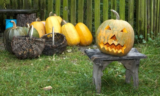 Coming up With Great Halloween Yard Decoration Ideas