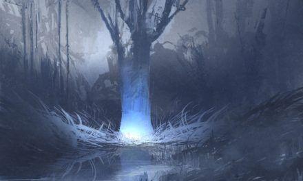 The Dog Meadow Lights