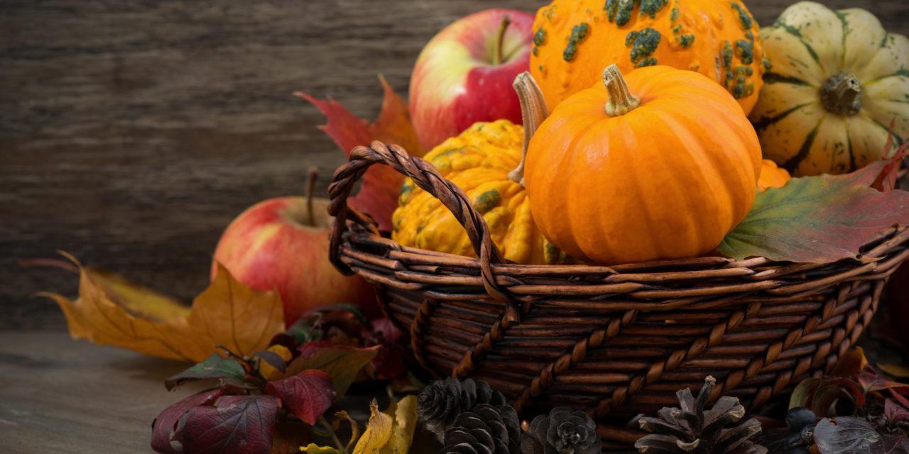 Gift Ideas for the Halloween Season