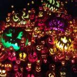 Pumpkin Hunter Heaven
